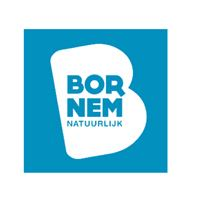 architect bornem